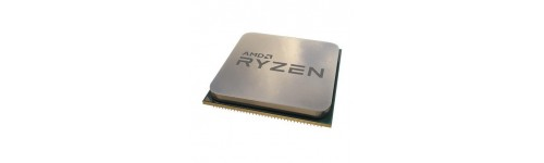 MICROPROCESSORI AMD (Socket AM4)